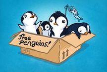 Pingvinek :33 / Minden ami pingvin...:3