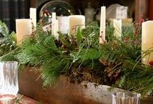 Christmas Decoration Inspiration / Great ideas on how to use your Harbor Farm Big Box of Greens that has 8lbs of selected pine, cedar, and balsam with a dozen pine cones. http://www.harborfarm.com/big-box-of-greens-christmas-decorations/