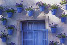 Bold Bright Breezy Blue