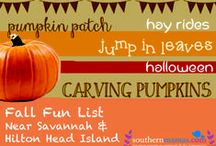 Fall 2015 Savannah hayrides, corn mazes, Halloween fun, pumpkin patches, fall festivals / Make the most of Fall 2015 in Savannah & the Lowcountry. Check out our Fall Fun Guide 2015 for hayrides, corn mazes, fall festivals, Halloween events, pumpkin patches