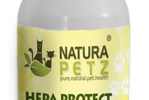 Hepa Protect / Hepa Protect is used holistically for general digestive, liver & kidney support, to regenerate liver cells, to cleanse & repair liver function, to detoxify & protect the liver & kidneys by promoting bile flow & production, to tone, balance & rehabilitate the liver & kidneys, to promote the performance, health & repair of the liver, kidneys, bladder & gall bladder, to normalize liver enzyme levels, for liver disease & kidney disorders & support even when liver damage is present.