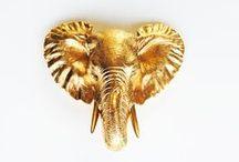 Gold Dream