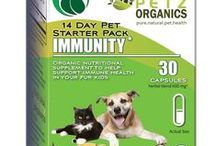 Immunity Starter Pack for Dogs and Cats / Super food and adaptogen help balance immunity toward balanced wellness.   May help support deep immune function  May help reduce inflammation which is directly related to disease presentation  Probiotic helps promote digestive health  Natural digestive, steroid and anti-allergen   For symptoms related to arthritis, joint inflammation & degenerative cartilage conditions  Adjunctive for Lyme and Heartworm disease and digestive disorders