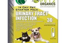 Urinary Tract Infection Starter Pack for Dogs and Cats / Probiotic digestive aid may help address urinary tract, bladder & kidney infections  May help address symptoms related to cystitis, pyelonephritis, FLUTD & FUS  May help tone connective tissue of the bladder & urethra   For incontinent pets & those suffering bladder loss  Adaptogen content may help help identify dysfunction, limit stone formation & nutritionally work to achieve balance Helps alleviate pain and discomfort associated with bladder and kidney infections