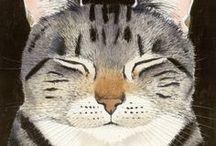 CAT | Lady