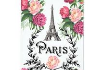 Paris Wedding Invitations / Paris invitations and French theme wedding invitations, including vintage, rustic, elegant, and more!