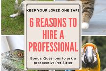 Professional Pet Care -Furever Haus / Boards about pet-care, sitting, walking and caring for animals.  Pet-Sitters International, blogs etc #Petsittersinternational #Love #petcare #petsitting