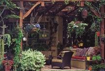 Garden: pergola & arbor
