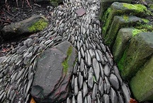 Garden: pathways