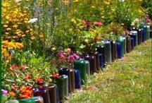 Gardening: tips & tricks