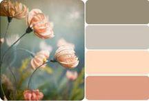 COOOL   :   color palettes / by Secret Unknownus