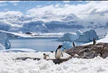 Antarctica, Islands, Coasts / by Linda Meeker