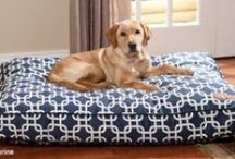 Snuggly Dog Beds / Let sleeping dogs lie... in their favorite dog bed! / by Drs. Foster and Smith