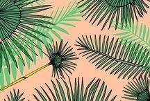 Botanics / Blomster, planter