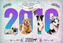 Tierra de Perros / En Tierra de Perros hemos diseñado un hermoso lugar libre, natural y seguro, donde el bienestar canino es nuestra máxima prioridad. #tierradeperros #perros #dogs #doglover #perroscolombia #fun #pets #nature #animals #happydogs #perrosbogota #perroscolombia #colegiocanino
