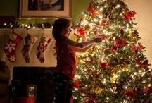 Holiday Decor / by Kelsey Halverson