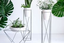 GARDENING: Indoor and Out / Plants, gardening, etc.