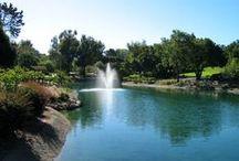 NorCal - Menlo Park