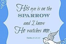 Sandra Brooks McCravy, Sandy McCravy, Sandi McCravy, Greg McCravy, Derek McCravy, Johnathan McCravy, Sparrow, Bible, God