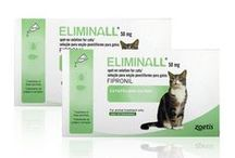 Cat Medicines / A range of cat treatments available from Vet-Medic.