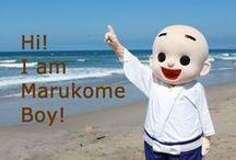 Marukome Boy