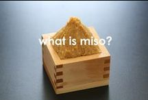 What is Miso? / Learn more about Japanese traditional ingredient, Miso!
