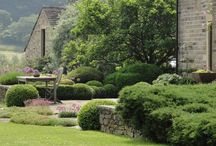 Yorkshire Gardens / Inspirational gardens from all over this beautiful county