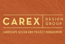 Our Story - Carex Design Group / This is the story of who we are, how we got started and what we're doing now ...