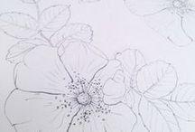 > my botanical studies <