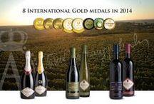 Our Wines / Wines belonging to #Aleksandrovic portfolio consisting of brands such as Trijumf (Triumph), Harizma, Varijanta, Regent, Vizija, Rodoslov and many others.
