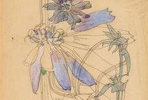 > Charles Rennie Mackintosh <