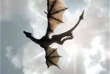 For the love of Dragons / by Tracy Jilbert : Phlox Dragon Designs