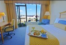 Get Comfortable / The Newport's Accommodations / by The Newport Harbor Hotel and Marina