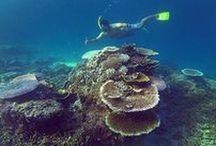 Things to do on Nias Island / Adventures and activities on Nias Island