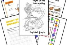 Five In A Row / Lapbooks, activities, and ideas to go with the Five In A Row curriculum.