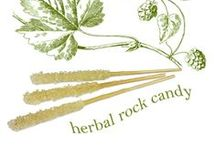 Go Herbal / get balanced with herbal remedies, teas, tonics, and holistic tips