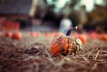 AUTUMN / My favourite season!!! LOVE IT!:*