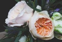 floral / beautiful blooms