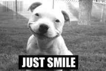 Smile! / Funny pics to put a smile on your face.