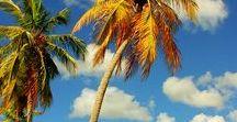 living the life- Caribbean way