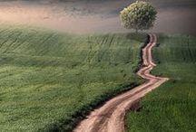 """Seguir / """"Despreza as estradas largas, segue os carreiros."""" ( Pitágoras)"""