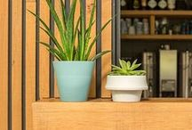 JOKJOR Fold - Flexible planter / The JOKJOR Fold is a pot that grows along with the plant. The Fold can doubling it's capacity. Italian designer Emanuele Pizzolorusso designed a flexible for plants as they grow.