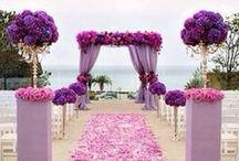 I♥Her...Dream Wedding / by B. Shine