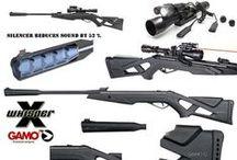 Air Guns / All the air guns, and their accessories that I would buy
