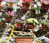 FEDERICA MANDATO - Photos / Federica Mandato's Photos  Link to my website -> https://federicamandato.wixsite.com/federicamandato My Instagram -> https://www.instagram.com/federica.mandato/