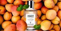 Test CM abricot / BERDOUES Eau de Toilette 1902  Abricot & Basilic  Élégance, délicatesse, fraîcheur et nature. Une fragrance unique et subtile qui vous transportera avec nostalgie dans un décor provençal.