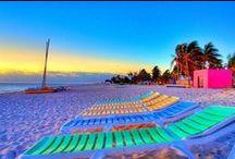 Paradise CND