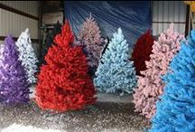 CHRISTMAS: Trees (Alternative) / Whether it is a traditional tree or a non-traditional tree that you choose to put up each year. I think the options are really getting interesting. HAVE A VERY MERRY CHRISTMAS EVERYONE! / by Missy Shaffer