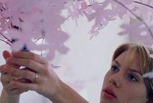 L'image d'un film / Directeur de la Photographie / by Pauline