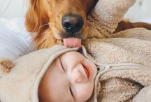 too cute / by Sarah Papes